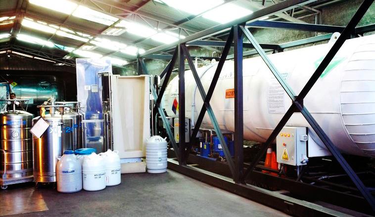 cryo-salud-nitrogeno-liquido