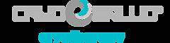 logo_cryosalud